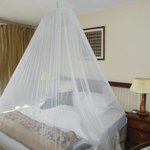 Mosquito net in place