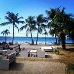Photo de Café de Playa
