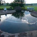Moorcroft Manor pool