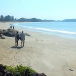 walked to patnem beach