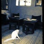 Mimoun dans le salon