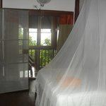 Treetop bungalow