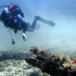 kalipso reef