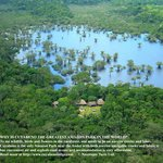The 600,000 ha of Cuaybeno are now well protected