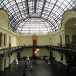 Museo delle Belle Arti (Museo Nacional de Bellas Artes)