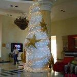 Beautiful Christmas tree in the lobby!!