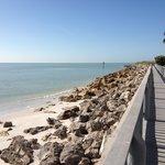 View from boardwalk