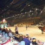 Foto van Medieval Times Dinner & Tournament
