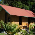 Wood Shed/House