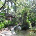 Serene gardens to relax