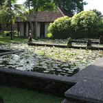 Beautiful grounds of The Chedi