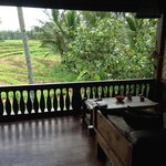 View from Harvest Bungalow main bedroom