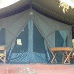 Tent #4N