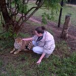Emdoneni Cat Rehabilitation Centre - Up close and personal. :)
