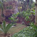 Timeless ancient ruins in a lush tropical environment.