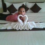 romantic swan towel on bed.
