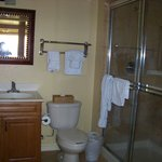 Shower/commode area