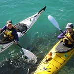 Guided Sea Kayaking Trips