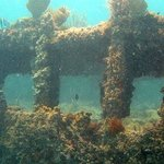 Sunken Ship We Snorkeled Around