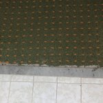 Worn carpet in bathroom doorway