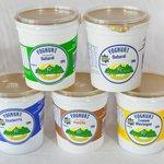Delicious Swiss-style Premium Yoghurt