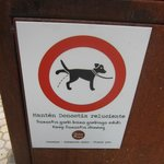 instructions for dogs
