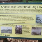 description of the tree trunk - centenntial tree