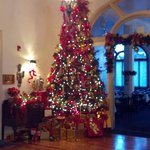 Christmas Tree in Lobby 2012