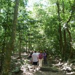 Touring the Tulum Jungle
