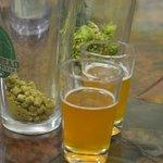 Real hops vs. Pellets