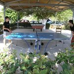 PING PONG -PLAY AREA