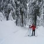 Skiing near Oceanside B&B and SPA