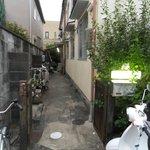 Foto de Green Peace in Kyoto