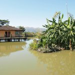 Bungalows on artificial lake