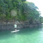 paddle boarding bay