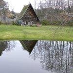 Pond in back of hotel