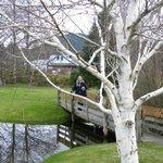 Pond and bridge behind hotel