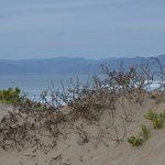 Sand dunes at end of boardwalk