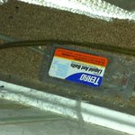 dusty ant trap found behind bed with nasty old carpet