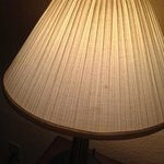 stained lampshade (one of several)