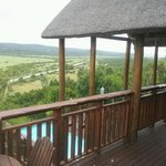 great view of addo park from my room