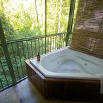 Spa suite looking over the rainforest