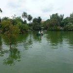 A nice little pond.