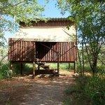 Mosethla Bush Camp room