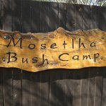 Mosethla Bush Camp