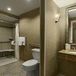 Guestroom Accessible Bathrom