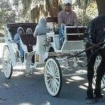 How about a carriage ride?