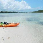Rent a kayak and explore!