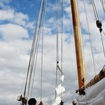 Here is were partisipaction take place. Helping raise the sails.