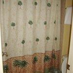 Bathroom...Loft has 1 upstairs & 1 downstairs